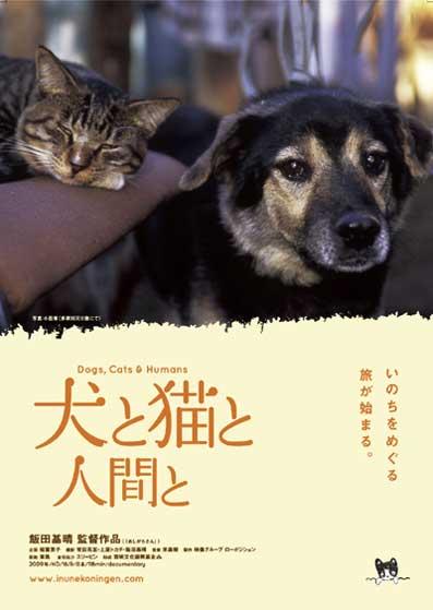 犬と猫と人間と1