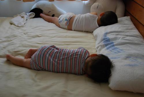 兄弟お昼寝