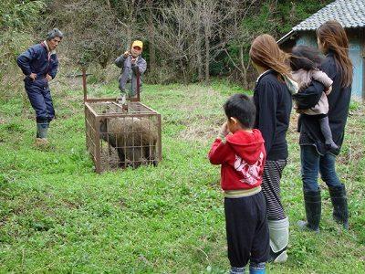 猪と近所の奥様
