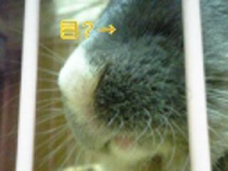 060519_225114_Ed_Ed_Ed_M.jpg