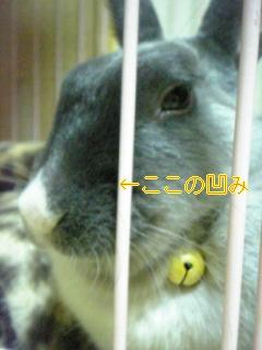 060519_225142_Ed_M.jpg