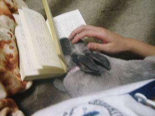 一緒に読もう♪