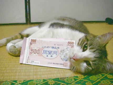 090521南阿蘇村商品券