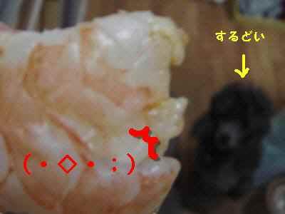 200806033.jpg