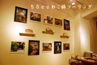 fukuzukan1.jpg