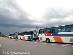 団体のバス♪