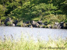 オタトマリ沼の溶岩♪