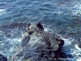 寝熊の岩♪