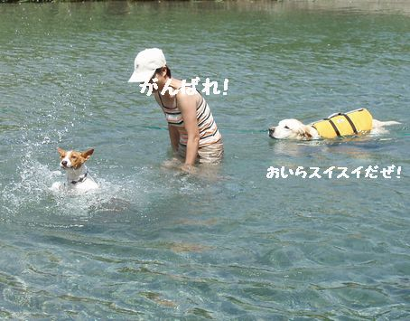 川遊び2回目