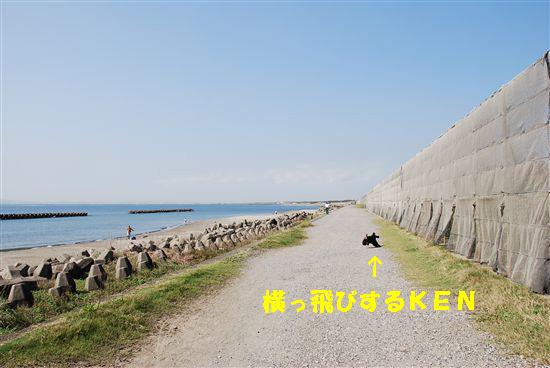 20081013 008_Rのコピー