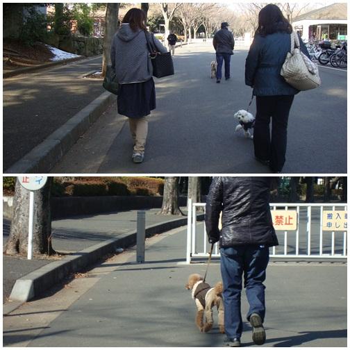 お散歩しながら・・