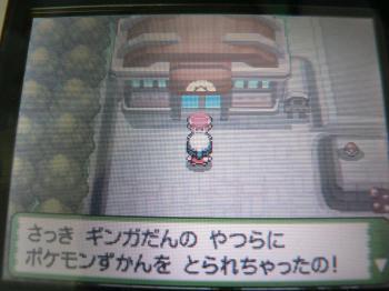 奪われたポケモン図鑑