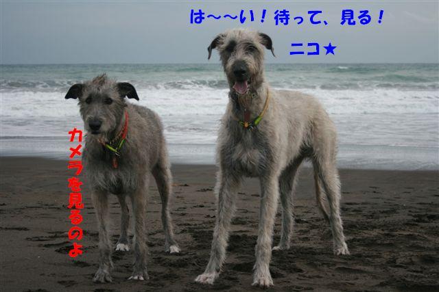 IMG_4750.jpg