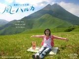 haruka_3wp_1024.jpg
