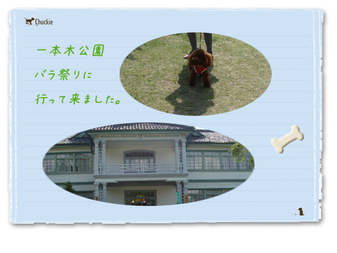 20080601-01.png