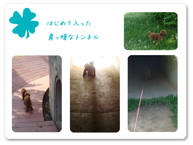 20080624-2.png