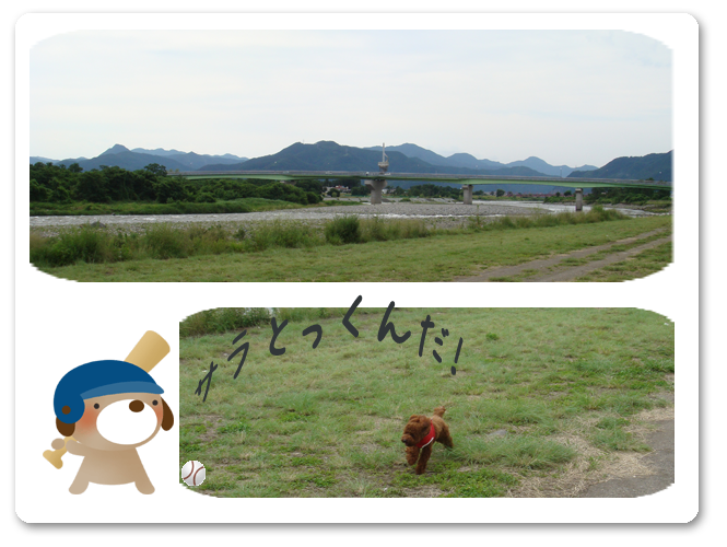 20080707-01.png