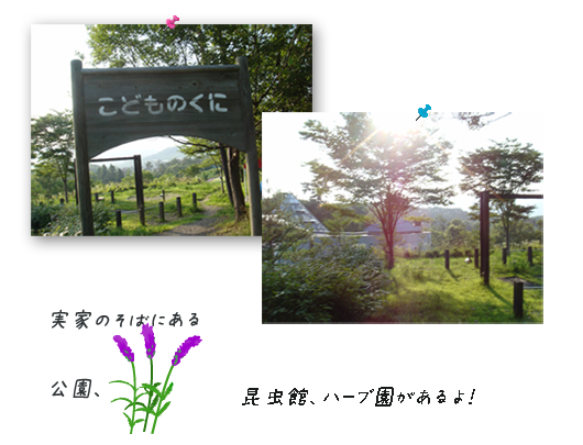 20080712-01.png