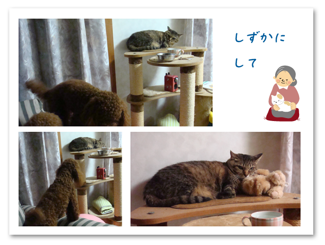 20080718-02.png