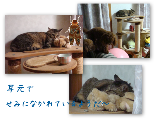 20080718-04.png