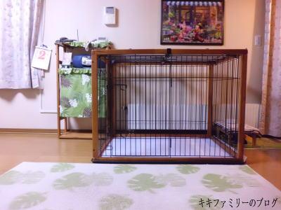 kf2011-10-2-2.jpg