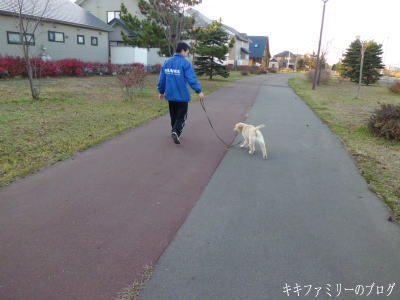 kf2011-11-3-2.jpg