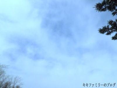 kf2012-3-6-3.jpg