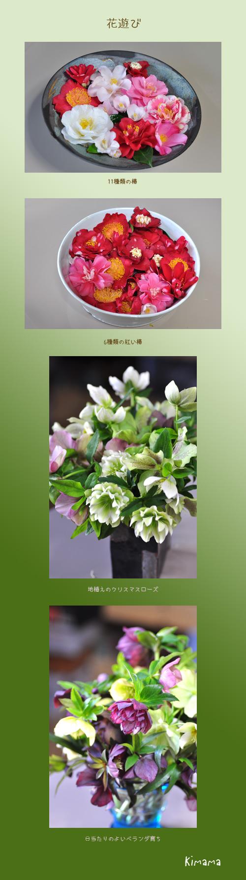 4月5日花遊び