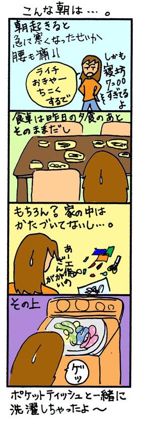 20061128015009.jpg