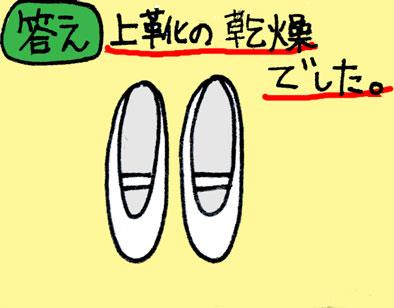 20061207232913.jpg