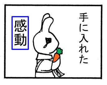 20070317083732.jpg