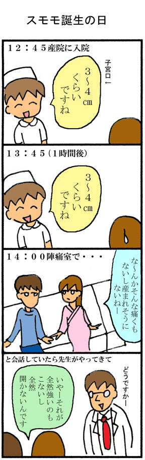 スモモ出産01