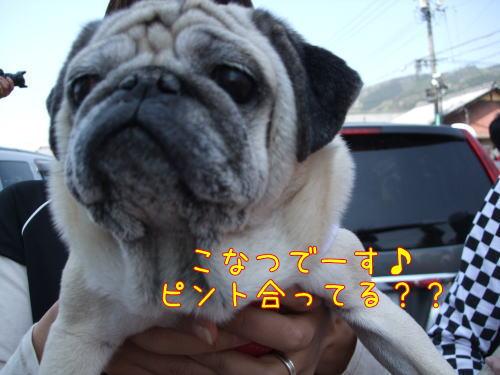 2009_04120030.jpg