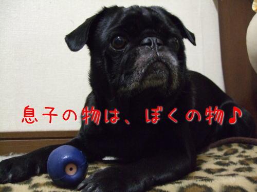 2009_06040079.jpg