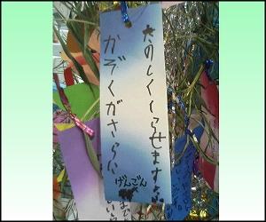 2009.7七夕3