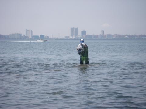 2009.05.08.シーバス狙い05