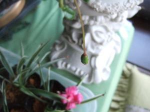 2008-03-12_05.jpg