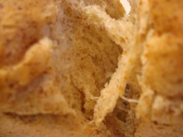 胚芽パン2