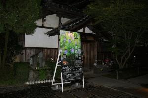 京都は快晴