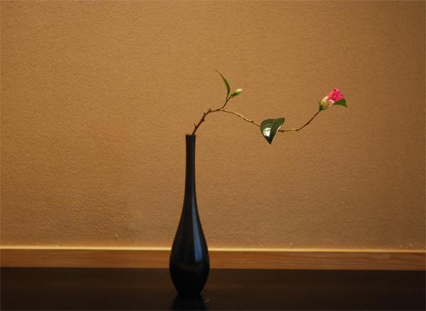 20120215wabisuke1