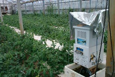 マルハナバチの巣箱