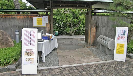 谷崎潤一郎をめぐる女性たち-1