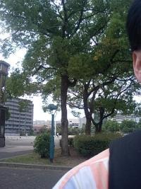 湊川公園でした。