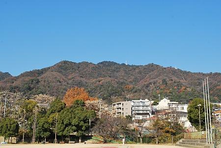摩耶山もきれいや。