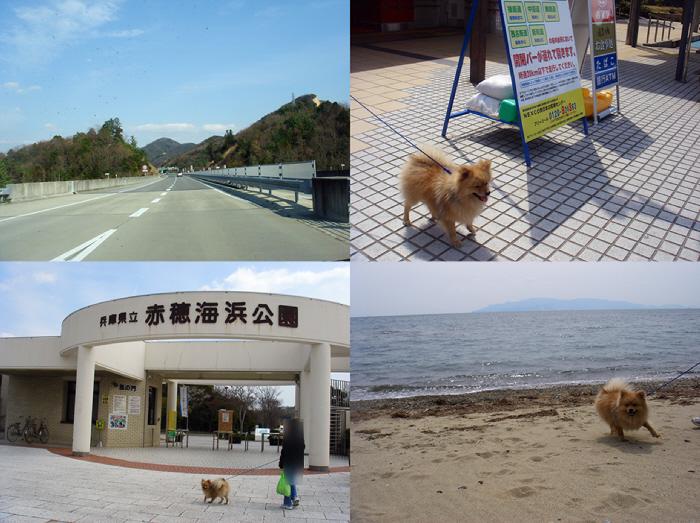 愛犬と行くETCの旅@赤穂