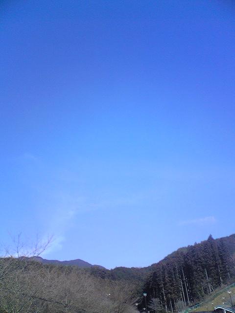 20090119001.jpg