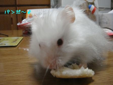 パンだ~♪