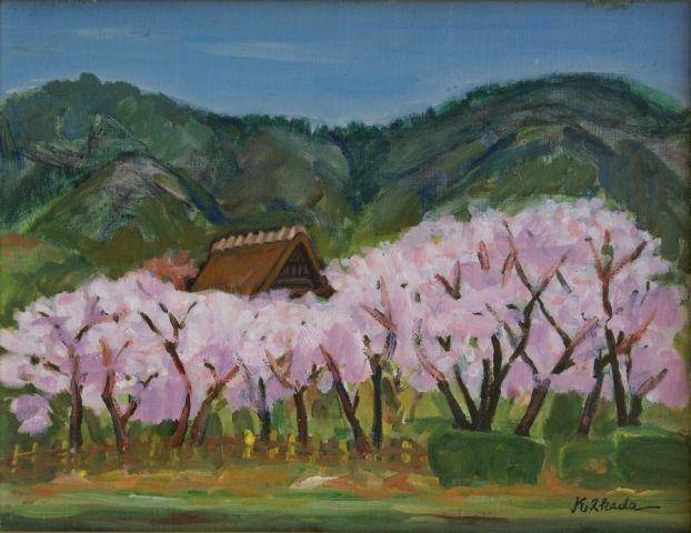 大原野の桜