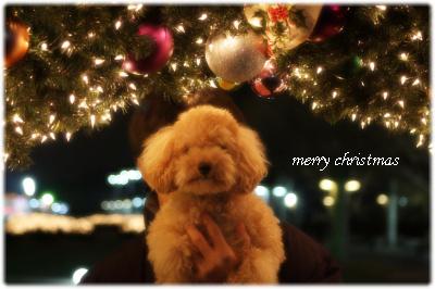 merry christmas2008