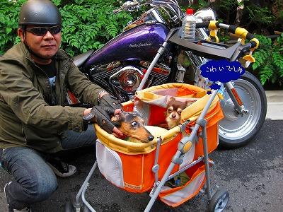 h-2008 06 01 019バイク2